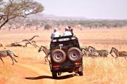 tansania_jeepsafari-zebras-minw1600h900